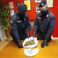 Controlli antidroga: due arresti, due denunce e due segnalazioni in provincia di Mantova. L'attività...