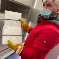 Covid, arrivate altre 2340 dosi di vaccino al Poma: serviranno per i richiami. Intanto ieri altri  7...