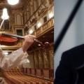 MantovaMusica. Capolavori per viola e pianoforte con il duo Braconi-Dindo a Palazzo Te. Domenica 9 m...