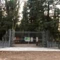 """""""Conoscersi nel bosco"""": percorso di ecopsicologia domenica 26 a Parco delle Bertone"""