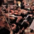 Mantova Musica si presenta alla Madonna della Vittoria