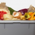Ambiente, in Italia raccolte 6,6 milioni di tonnellate di rifiuti organici