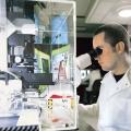 Ricerca, in Italia creato primo modello 3D di microbiota intestinale umano